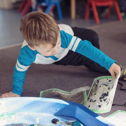 Sedbergh Nursery School - Mulberry Bush Tadpoles